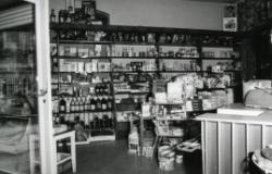 1959_1